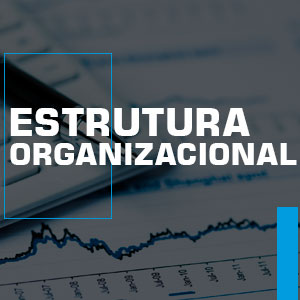 estrurura-organizacional
